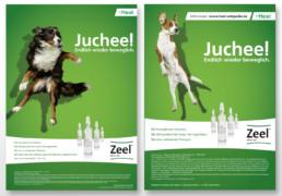 Anzeige Heel Juchee! - Healthcare-Kommunikation