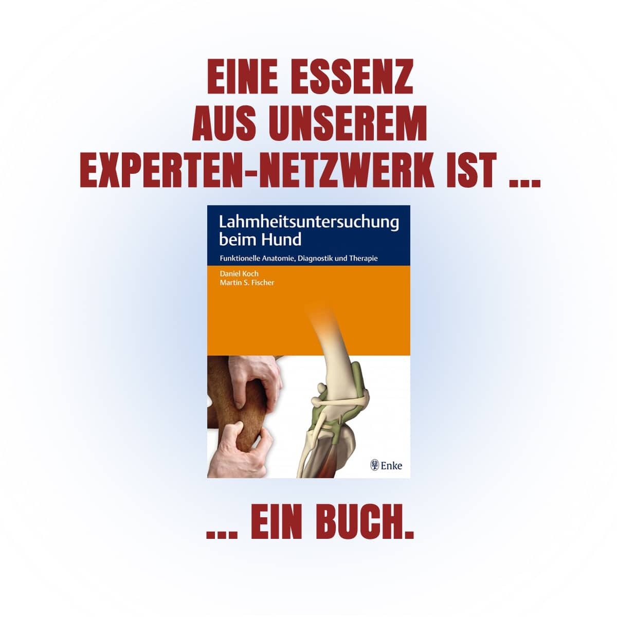 Enke Verlag - Buch Lahmheitsdiagnostik